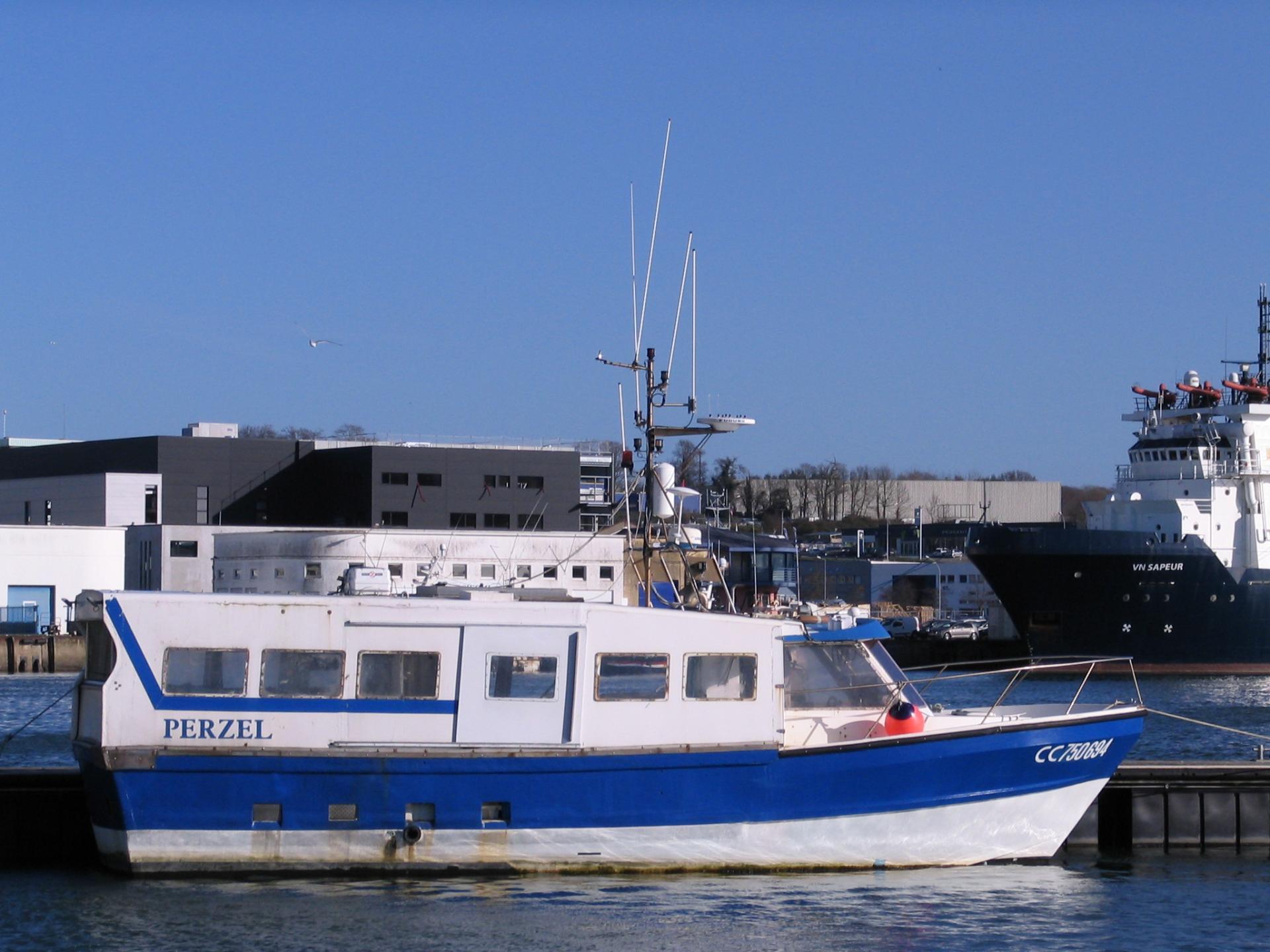 200120 perzel cc