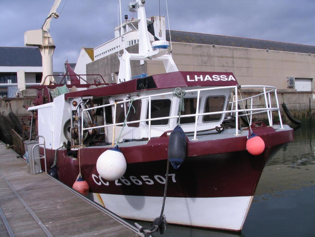 Lhassa cc266507