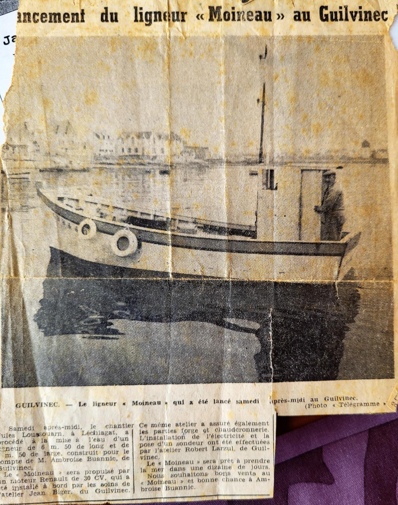 Moineau gv 8446 302898 gv 1972