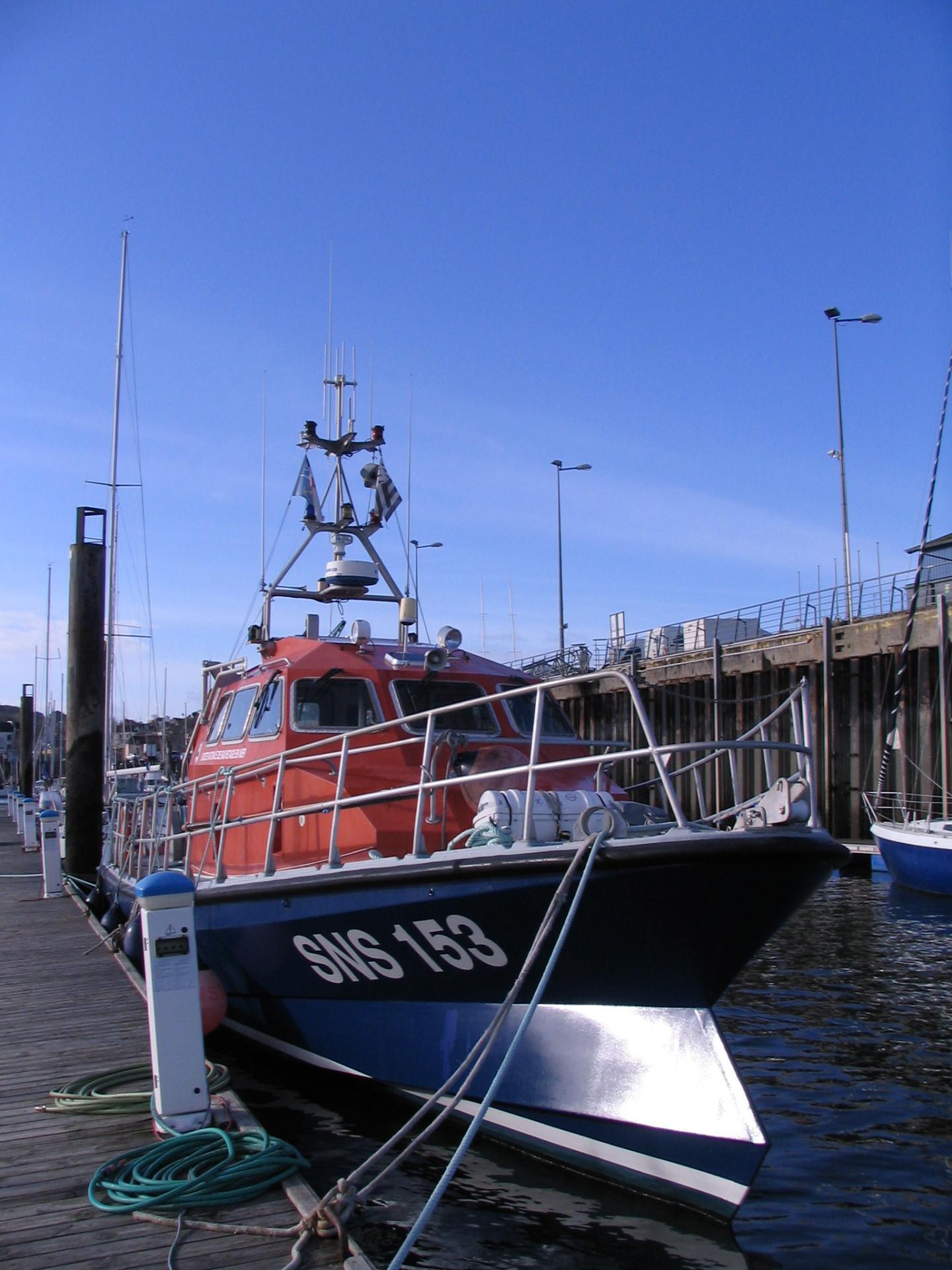 Penn sardin dz