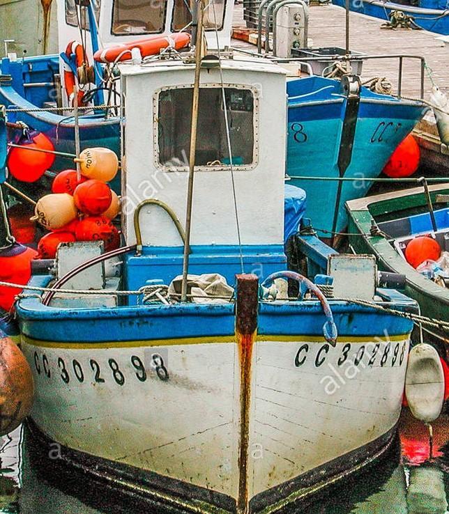 Port de concarneau moineau cc302898 2